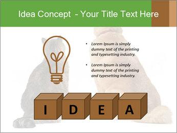 0000078923 PowerPoint Templates - Slide 80