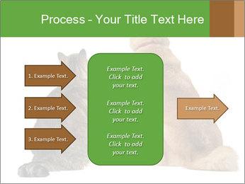 0000078923 PowerPoint Templates - Slide 85