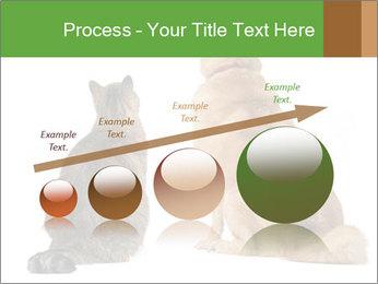 0000078923 PowerPoint Templates - Slide 87