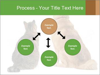 0000078923 PowerPoint Templates - Slide 91