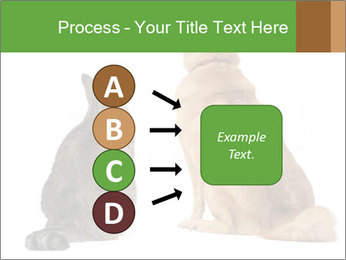 0000078923 PowerPoint Templates - Slide 94
