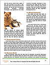0000078923 Word Templates - Page 4