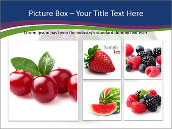 0000078926 PowerPoint Template - Slide 19