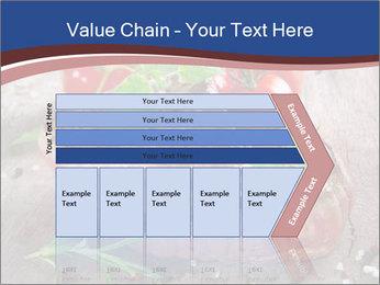 0000078929 PowerPoint Template - Slide 27