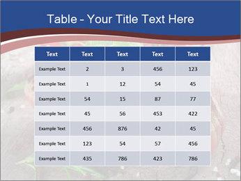 0000078929 PowerPoint Template - Slide 55