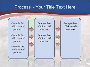 0000078929 PowerPoint Template - Slide 86