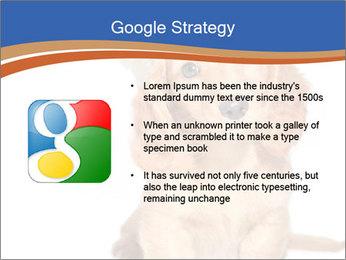 0000078930 PowerPoint Template - Slide 10