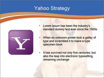 0000078930 PowerPoint Template - Slide 11