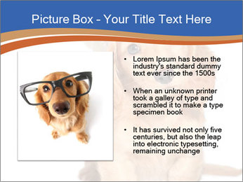 0000078930 PowerPoint Template - Slide 13