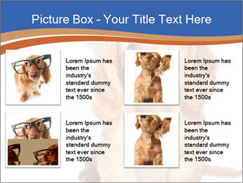 0000078930 PowerPoint Template - Slide 14