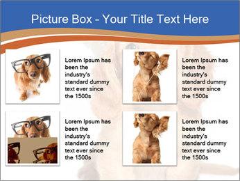 0000078930 PowerPoint Templates - Slide 14