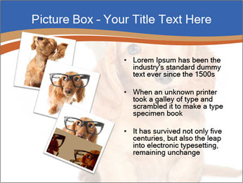 0000078930 PowerPoint Templates - Slide 17