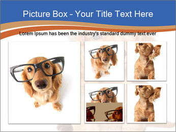 0000078930 PowerPoint Template - Slide 19