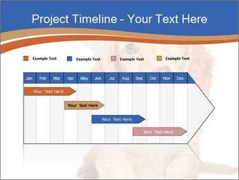0000078930 PowerPoint Template - Slide 25
