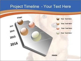 0000078930 PowerPoint Templates - Slide 26