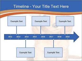 0000078930 PowerPoint Templates - Slide 28