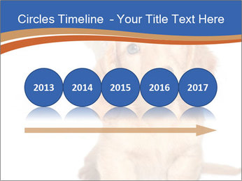 0000078930 PowerPoint Template - Slide 29