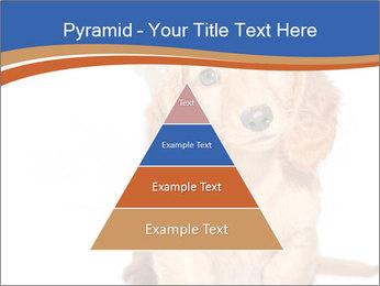 0000078930 PowerPoint Template - Slide 30