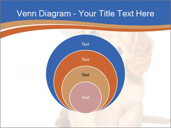 0000078930 PowerPoint Template - Slide 34