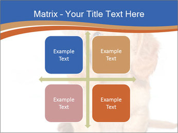 0000078930 PowerPoint Templates - Slide 37