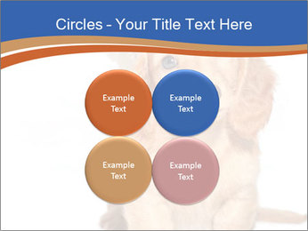 0000078930 PowerPoint Template - Slide 38