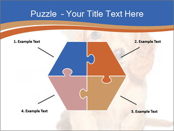 0000078930 PowerPoint Templates - Slide 40