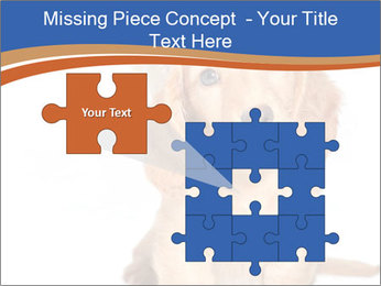 0000078930 PowerPoint Template - Slide 45