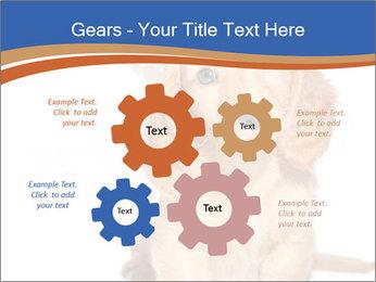 0000078930 PowerPoint Templates - Slide 47