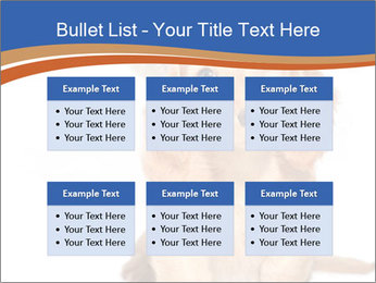 0000078930 PowerPoint Templates - Slide 56
