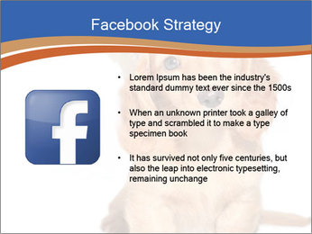 0000078930 PowerPoint Template - Slide 6