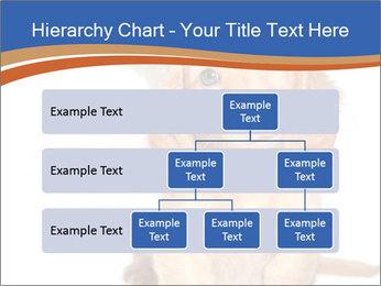 0000078930 PowerPoint Template - Slide 67
