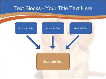0000078930 PowerPoint Templates - Slide 70