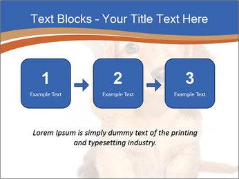 0000078930 PowerPoint Templates - Slide 71
