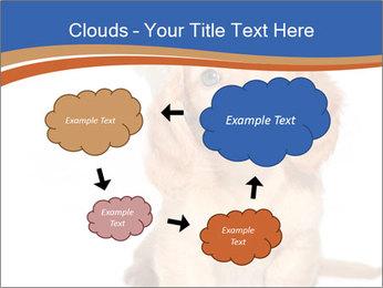 0000078930 PowerPoint Template - Slide 72