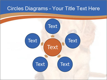 0000078930 PowerPoint Template - Slide 78