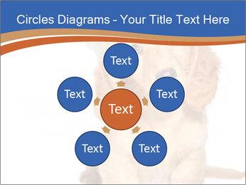 0000078930 PowerPoint Templates - Slide 78