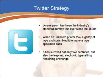0000078930 PowerPoint Templates - Slide 9
