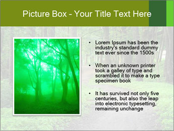 0000078932 PowerPoint Template - Slide 13