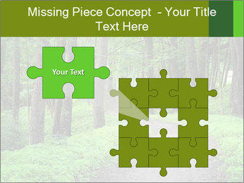 0000078932 PowerPoint Template - Slide 45