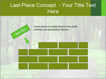 0000078932 PowerPoint Template - Slide 46