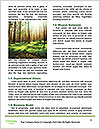 0000078932 Word Template - Page 4