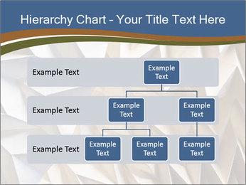 0000078937 PowerPoint Templates - Slide 67