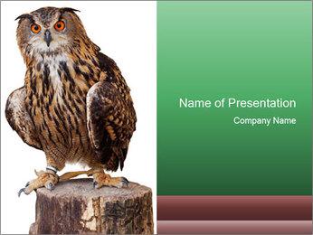 0000078938 PowerPoint Template - Slide 1