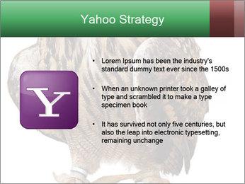 0000078938 PowerPoint Template - Slide 11