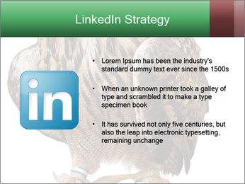 0000078938 PowerPoint Template - Slide 12