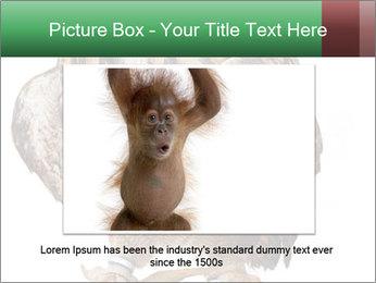 0000078938 PowerPoint Template - Slide 16