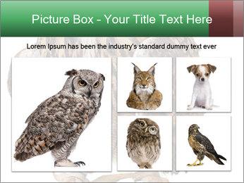 0000078938 PowerPoint Template - Slide 19