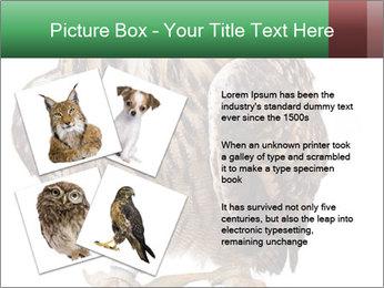 0000078938 PowerPoint Template - Slide 23