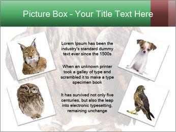 0000078938 PowerPoint Template - Slide 24