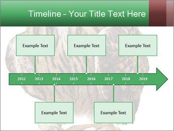 0000078938 PowerPoint Template - Slide 28